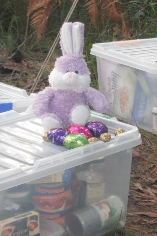 Easter Bunny in the Bush