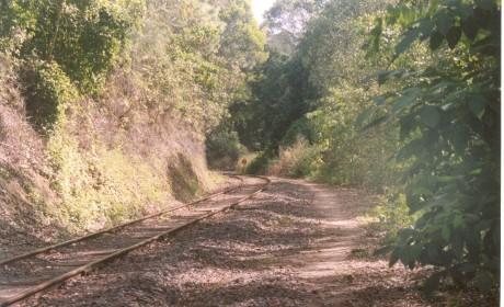 Kuranda railway line