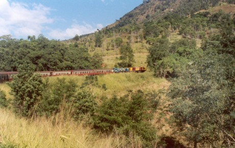 Cairns to Kuranda Train