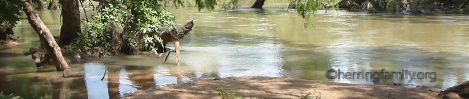 Croc what Croc